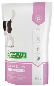 Junior Lamb natures protection
